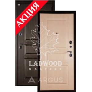 Стальная дверь АРГУС ДА-72