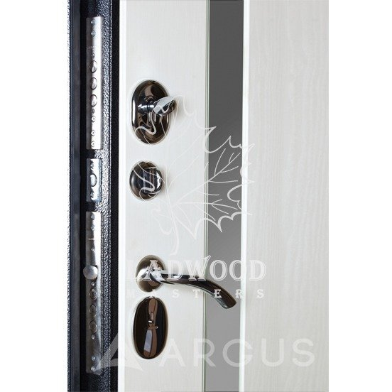 Стальная дверь АРГУС ДА-24