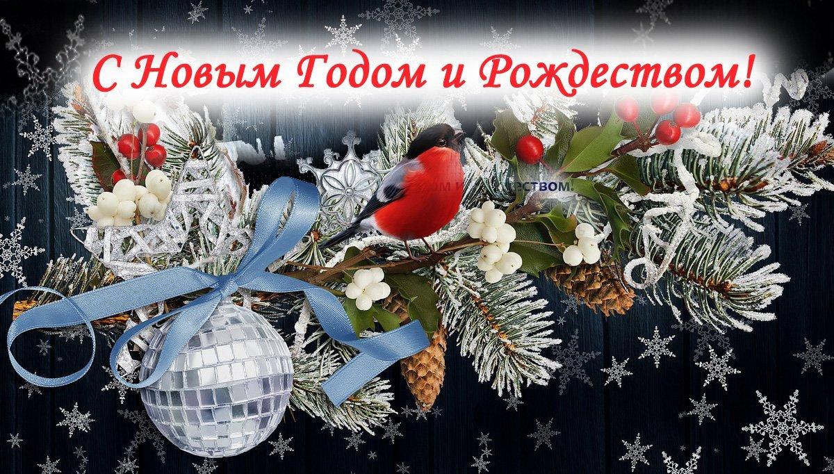 С Новым Годом и Рождеством! Аргус